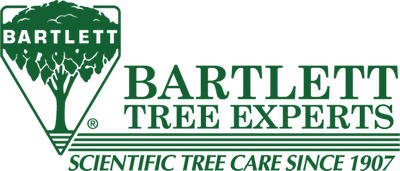 Bartlett Tree Service