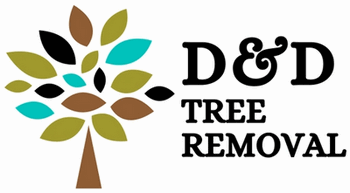 D and D Tree Removal